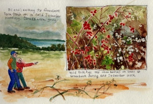 Rosehips and snowberry